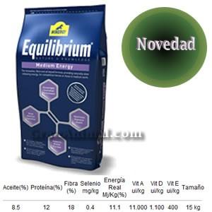 Equilibrium Medium Energy