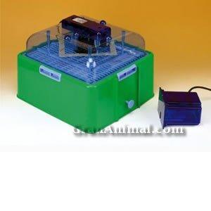 Motor incubadora 24