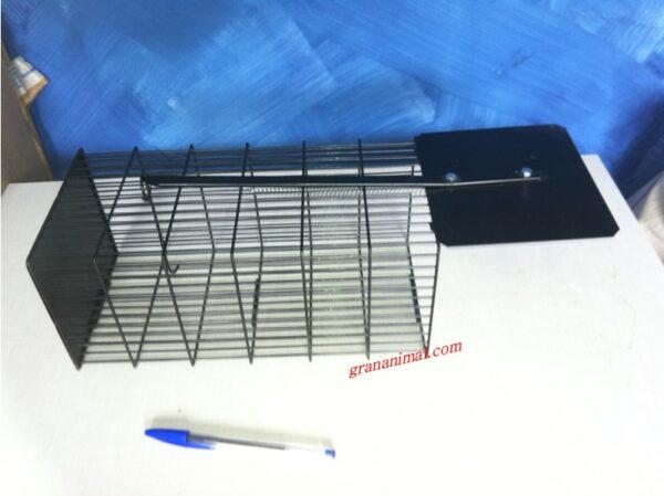 Jaula trampa para ratas ratones y otros roedores