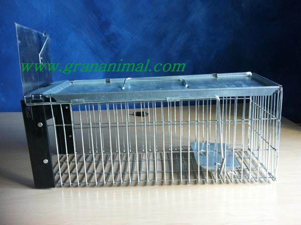 Jaula trampa para ratas ratones y otros roedores - Pulsador