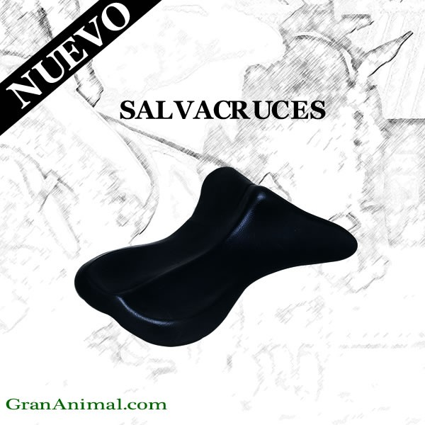 SALVACRUCES ANATÓMICO