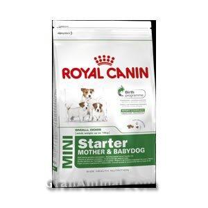 MINI STARTER 1 KG ROYAL CANIN
