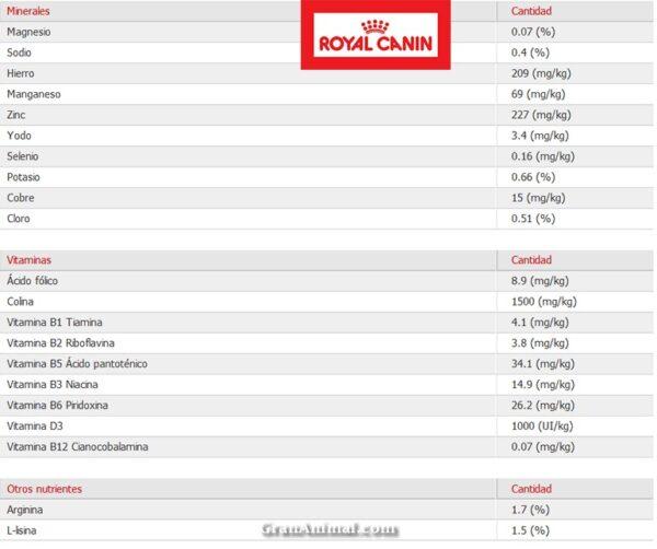 MINI JUNIOR 4 KG ROYAL CANIN