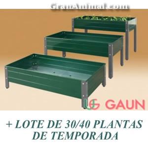 MESA DE CLTIVO GRANDE PATA ALTA + LOTE DE PLANTAS